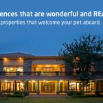 Verfied Properties Blog banner