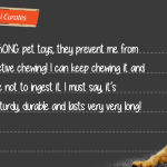 Kiki Curates_Blog Cover 4