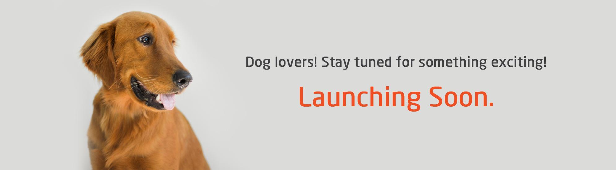 Launching-Soon-Banner
